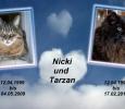 Tarzan und Nicki